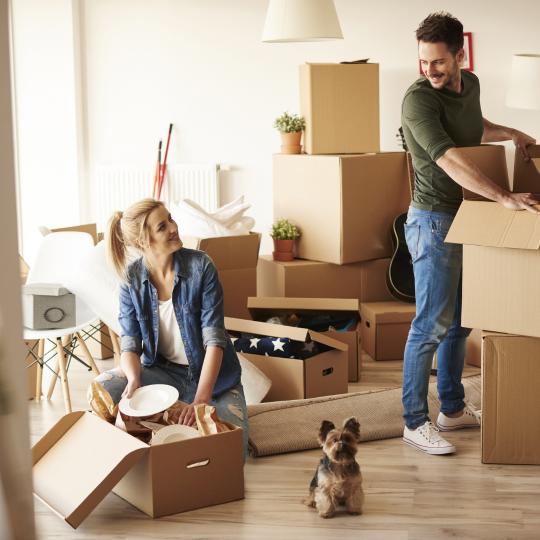 6 Things You Should Organise Before You Move Into Your New Home