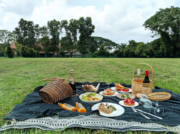 Top 4 Picnic Spots in the Lower North Shore